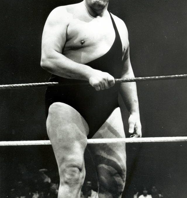 Wer war Andre the giant?